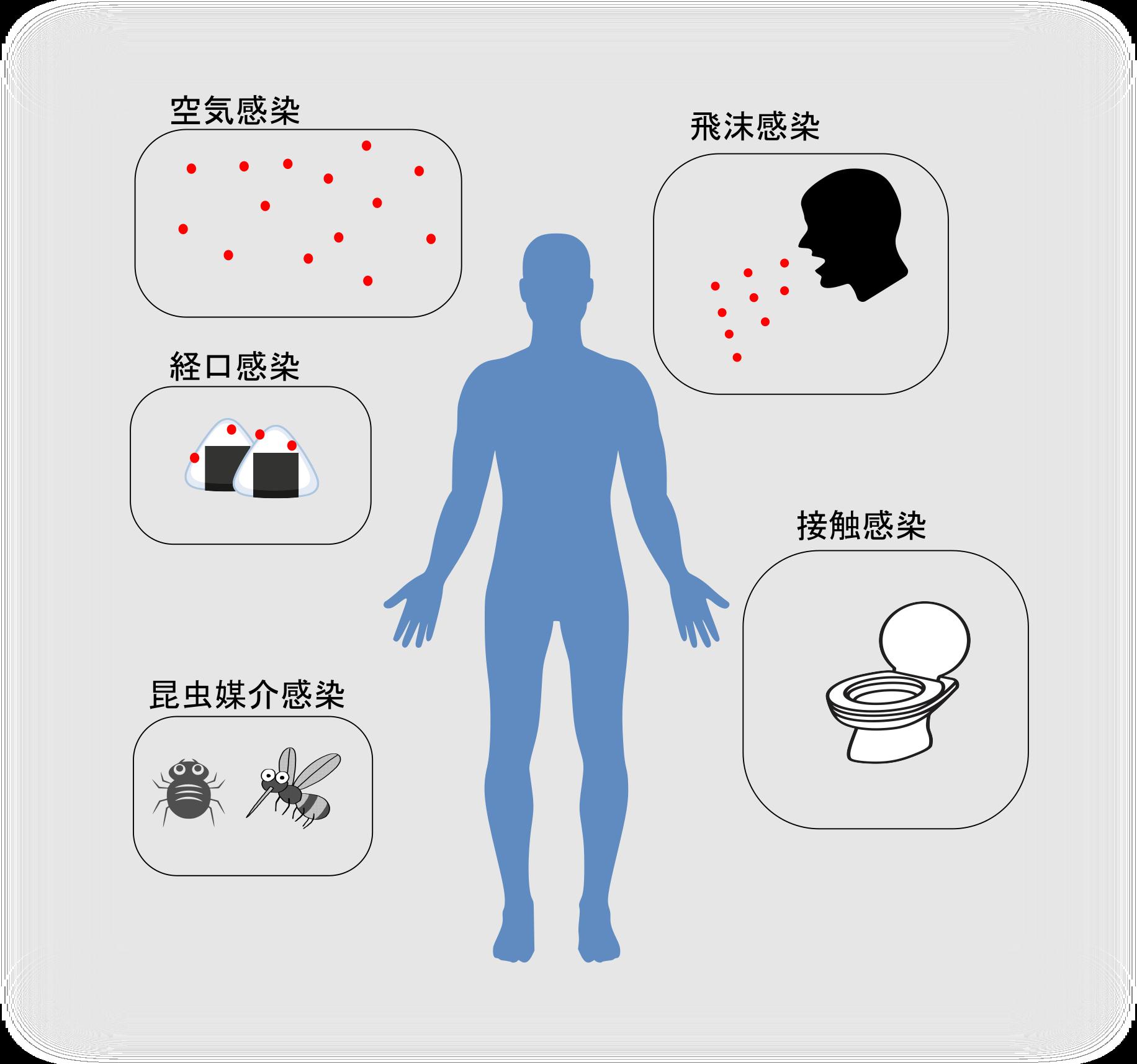 感染経路の解説図